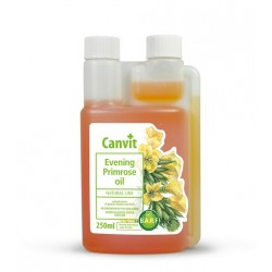 Evening Primrose Oil (Ligetszépe olaj)