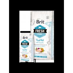Brit Fresh hal és sütőtök
