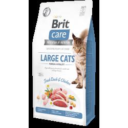 Brit Care LARGE CATS KACSA & CSIRKE